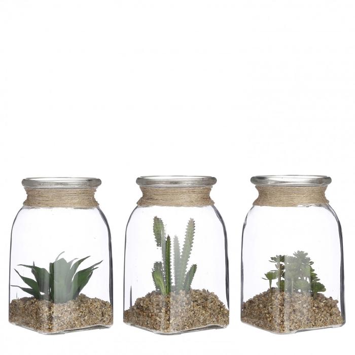 <h4>Homedeco Glas+vetplant d11*20cm ass.</h4>