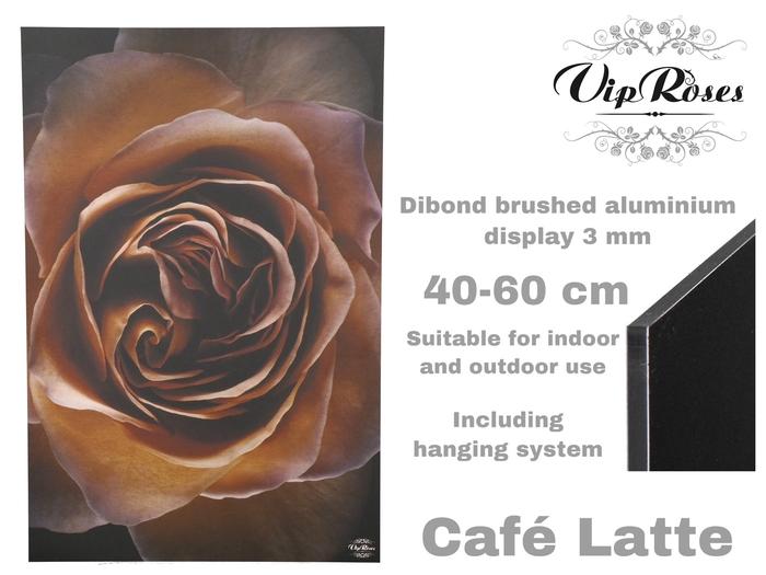 DISPLAY CAFE-LATTE