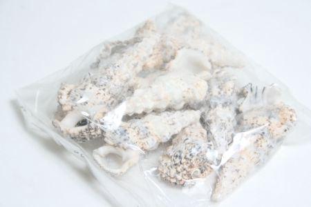 <h4>Basic Cerethium Nodolosum 300gr</h4>