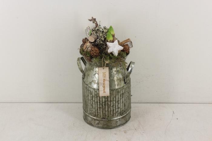 <h4>arr.. Hyacint MB - Melkbus green</h4>