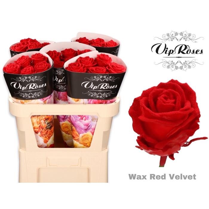 <h4>R GR WAX VELVET RED</h4>