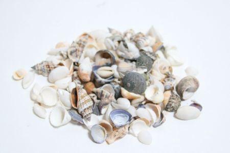 <h4>Basic Shell Mix 500gr</h4>