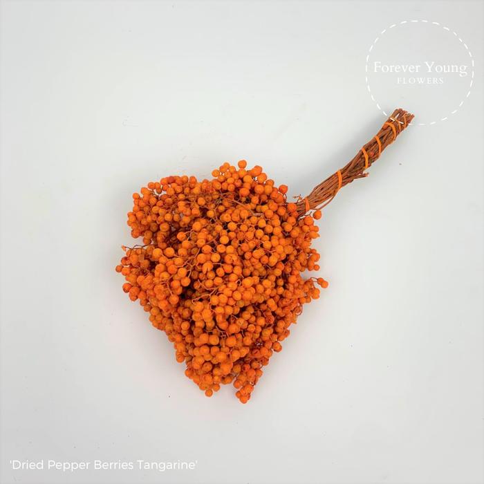 <h4>Dried Pepper Berries Tangarine</h4>