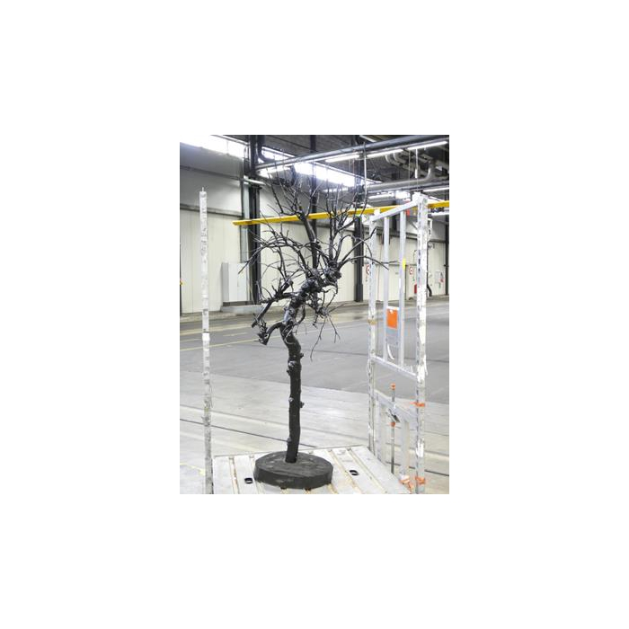 <h4>Apple Tree Black Gloss Slice.l</h4>