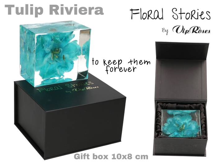 <h4>VIP FOSSIL EPOXY TULIP RIVIERA</h4>