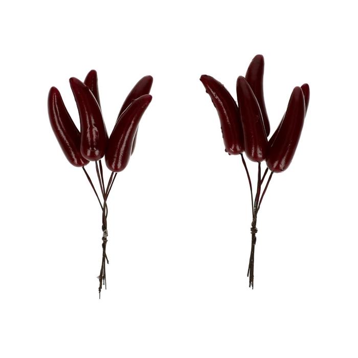 <h4>Autumn Pepper/wire d5cm x30</h4>