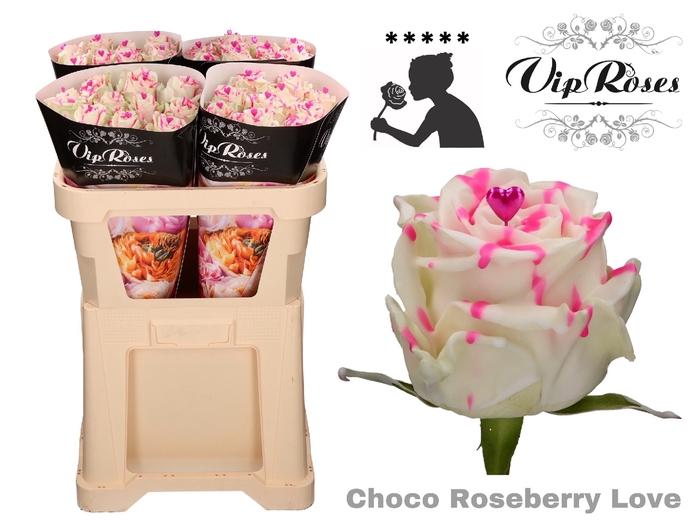 <h4>R GR CHOCO ROSEBERRY LOVE</h4>