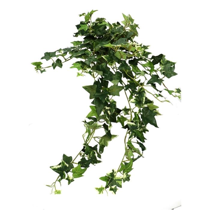 <h4>Silk Sage 70cm</h4>