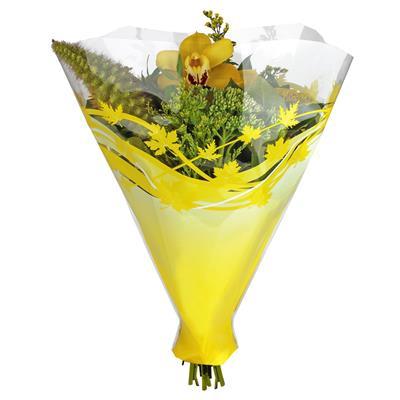 <h4>Housses 52x42x12cm OPP40 Autunno jaune</h4>