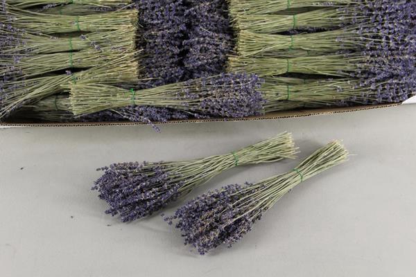 <h4>Df Lavendel Bs 40g</h4>