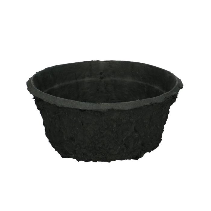 <h4>Oasis Biolit Bowl 19cm</h4>