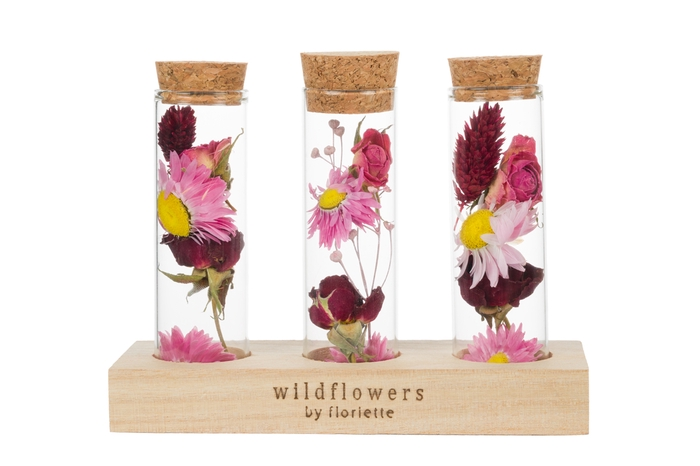 <h4>WOODEN STAND WISH BOTTLE TRIPLE NATURAL</h4>