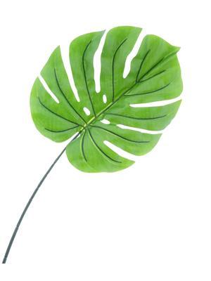 <h4>Af Philo Green Split Xl Rt</h4>