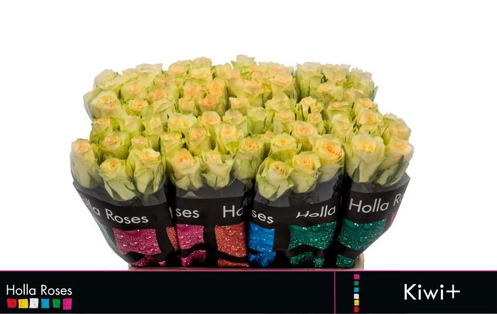 <h4>Rosa grootbloemig Kiwi</h4>