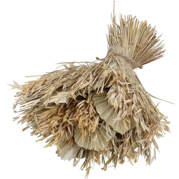 <h4>Dried flowers Palmspear 30*45cm</h4>