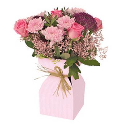 <h4>Vase Basic kraft carton+Plastique 11,5xH21cm rose</h4>