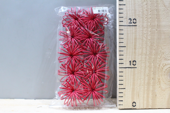<h4>RATTAN CURLY FLOWER RED 10PCS 24631</h4>