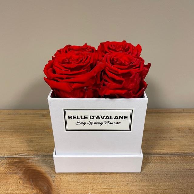 Box vk 10cm wit-rood