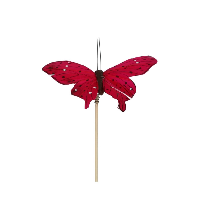 <h4>Bijsteker 50cm Vlinder Tropicana 8cm</h4>