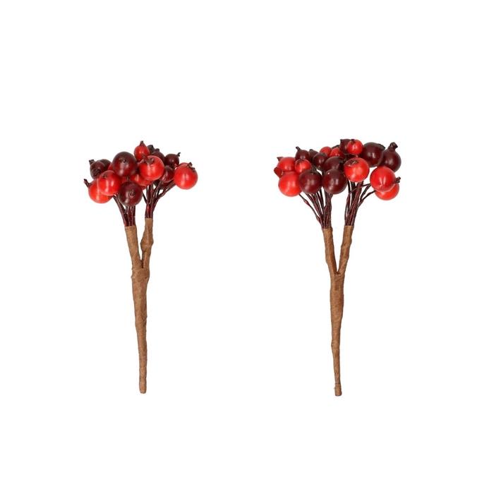 <h4>Autumn Berry bunch/wire d8cm x8</h4>