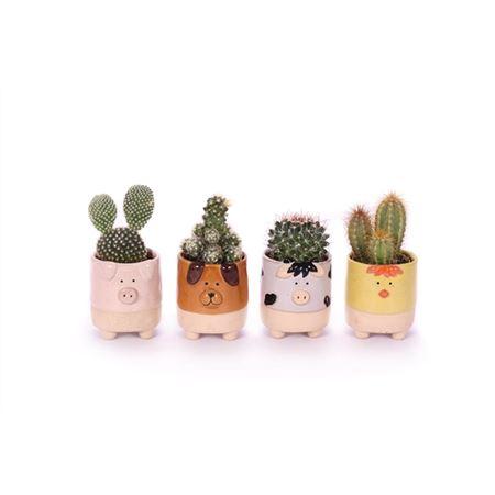 <h4>Cactus Farm Animals 5,5 Cm</h4>