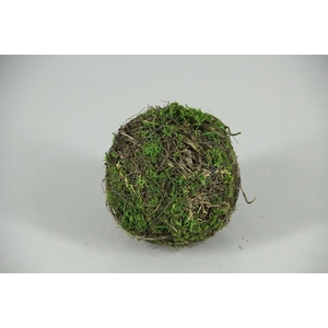 Ball Salim+moss 12cm