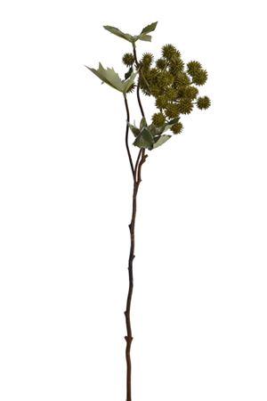 <h4>Flower Castor h54 green</h4>