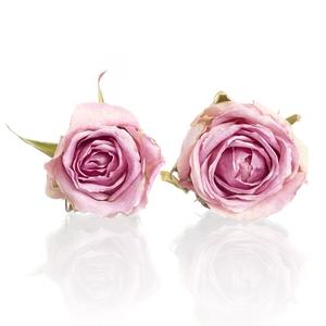 Rose Wham pink 4,5-5cm