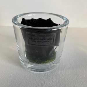 Cilinder d9x8h zwarte roos