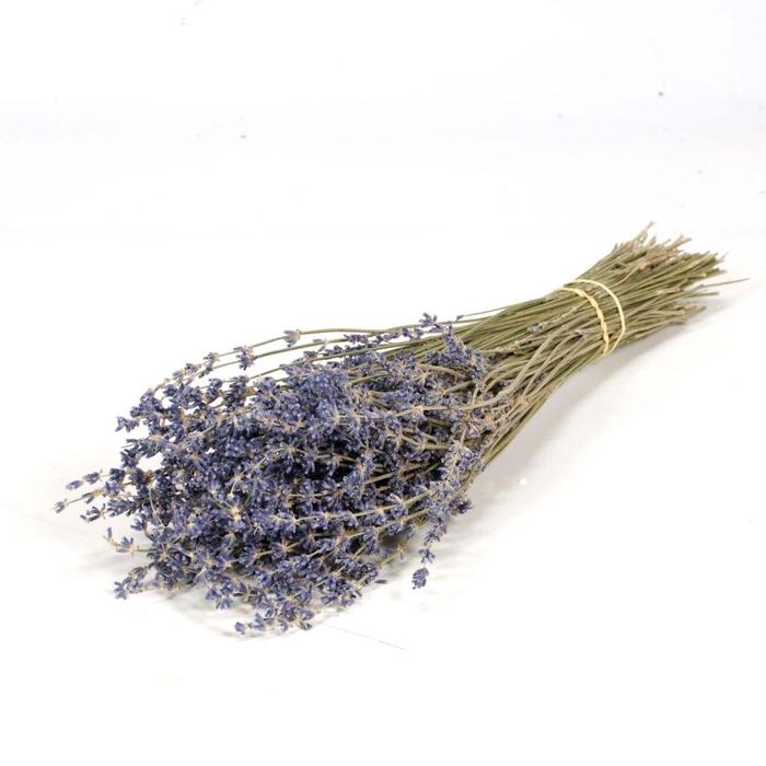 <h4>Lavender 100gr blue nat. Craft</h4>