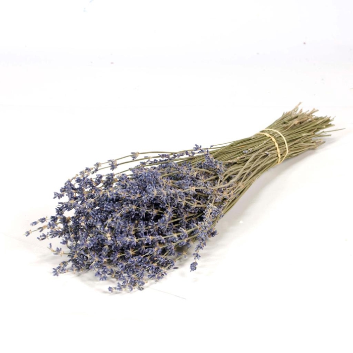 <h4>Lavender 100gr blue nat. Craft</h4>