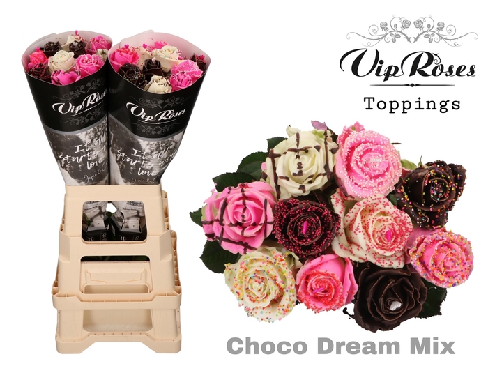 <h4>Vip R Gr Choco Dream Mix X 20</h4>