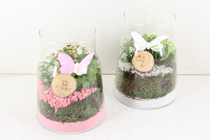 <h4>arr. PL - Glas vaas hoog - roze/wit</h4>