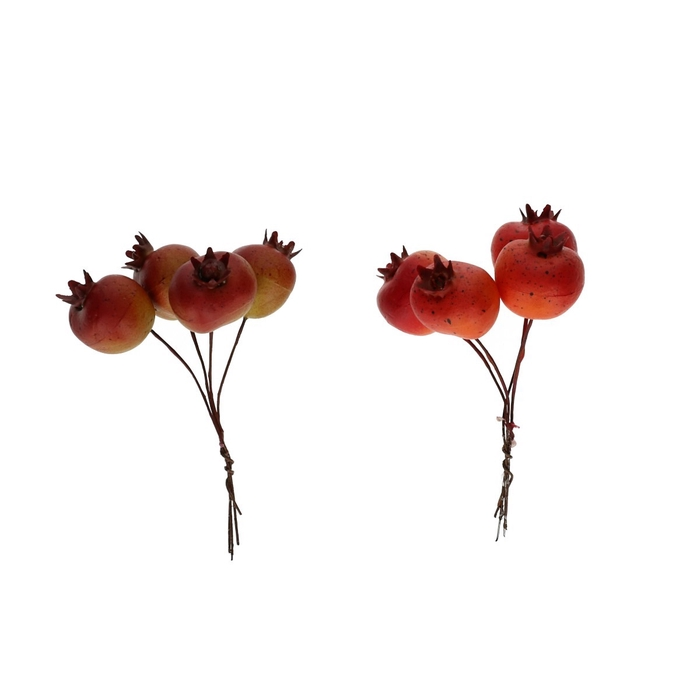 <h4>Autumn Pomegranate/wire 3cm x24</h4>