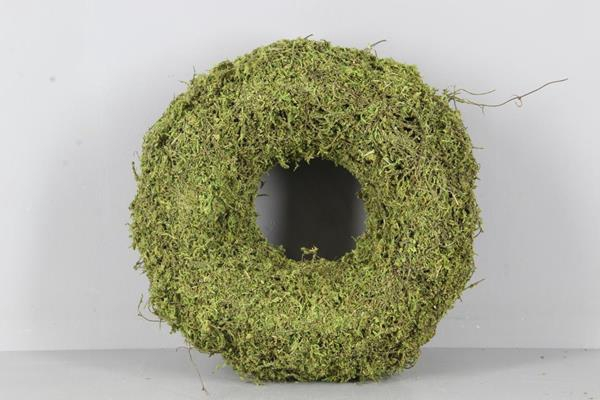 <h4>Wreath Moss(dried) Ø30x9cm Grn</h4>