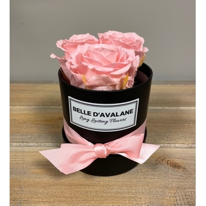 Box rd 10cm zwart-roze