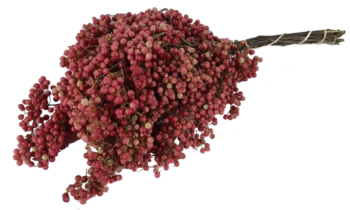 <h4>Pepperberries per bunch in poly natural</h4>