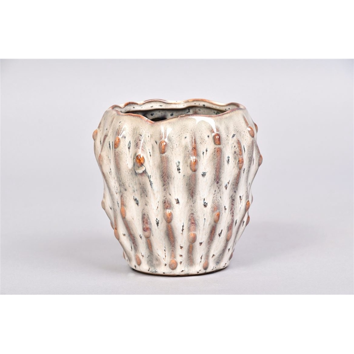 <h4>Amarillo Wit Pot 12x10cm</h4>