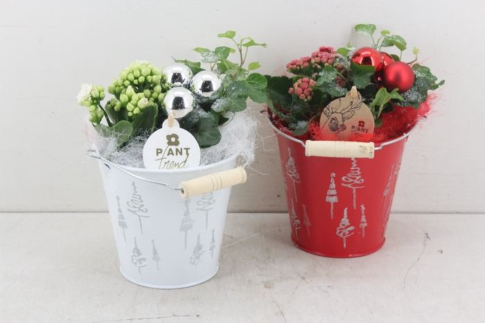 <h4>arr. PL - Zink emmer kerst - rood/wit</h4>