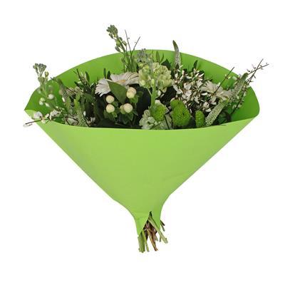 <h4>Houss 35x35cm Angelo 70gr kraft blanc vert</h4>