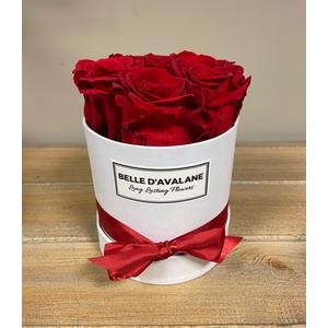 Box rd 12cm wit-rood