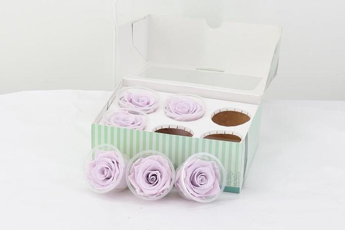 <h4>Preserv. Rs. Lavendel</h4>