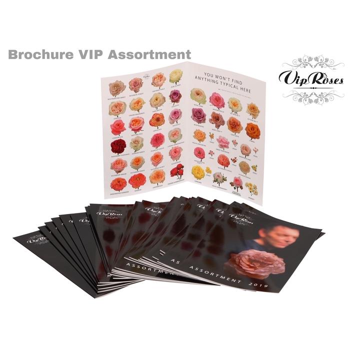 <h4>BROCHURE VIP ASSORTMENT</h4>