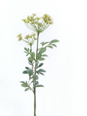 <h4>Af Bishops Flower Spray 76cm C</h4>