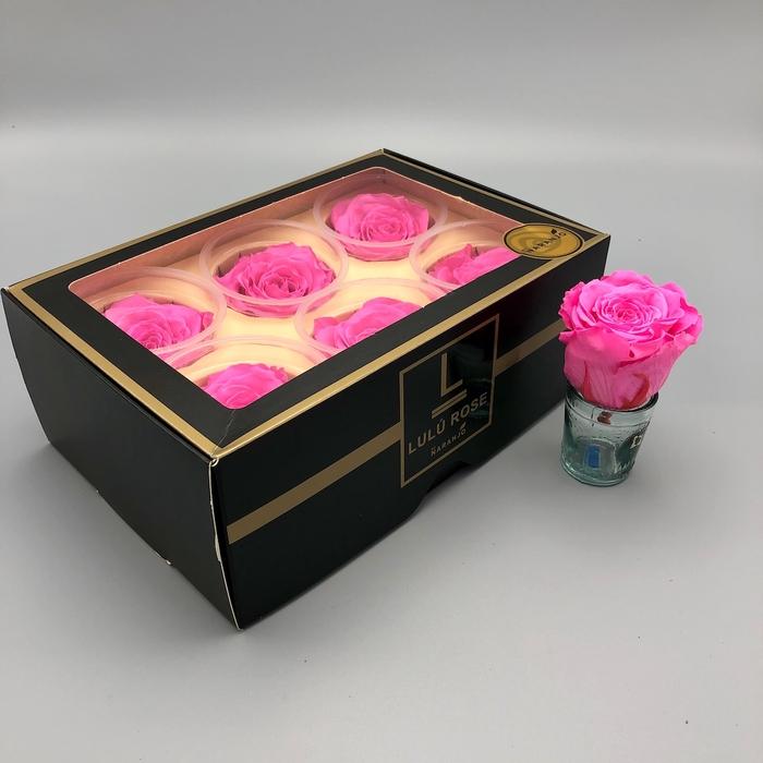 <h4>R PR Lulu (Large) Pink</h4>