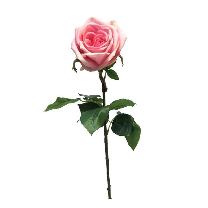 <h4>SILK FLOWERS - ROSA SERVATI GREEN/BEAUTY 68CM (S)</h4>