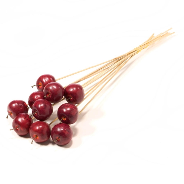 <h4>Apple 5cm o/s 10pc natural red</h4>