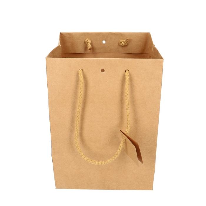 <h4>Tassen Gift bag d18/18*25cm</h4>