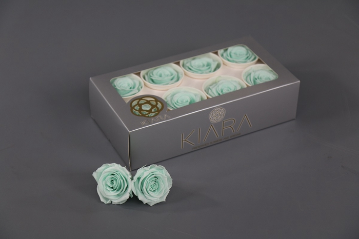 <h4>Rosa Preserved Minty Green Rose</h4>