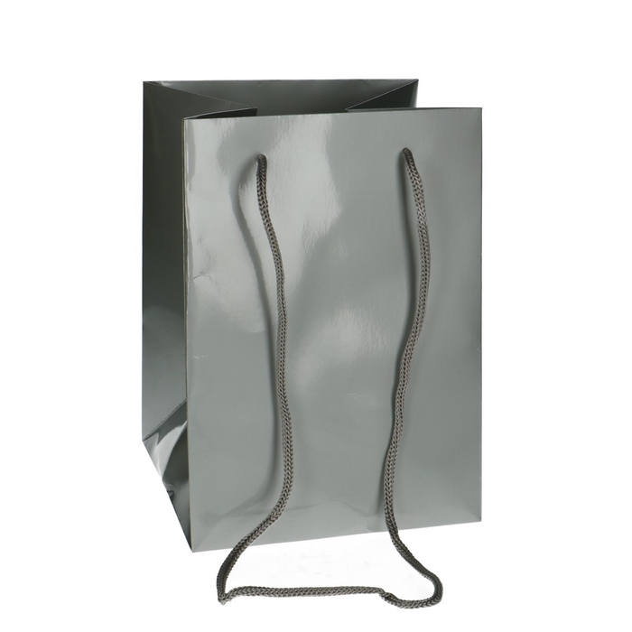 <h4>Bags Olympic 25*18*18cm</h4>